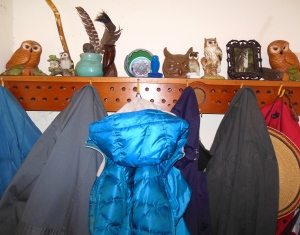 The owls migrated to perch above the coats for a season or two