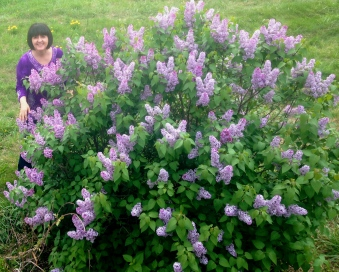 Kelley of the Lilac