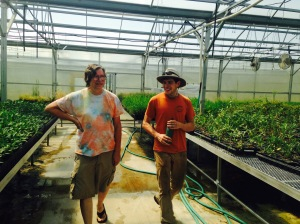 Daniel showing us the native prairie plant greenhouse on his last day of work there.