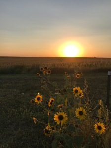An Expansive Kansas Road Trip in a Concise Time: Everyday